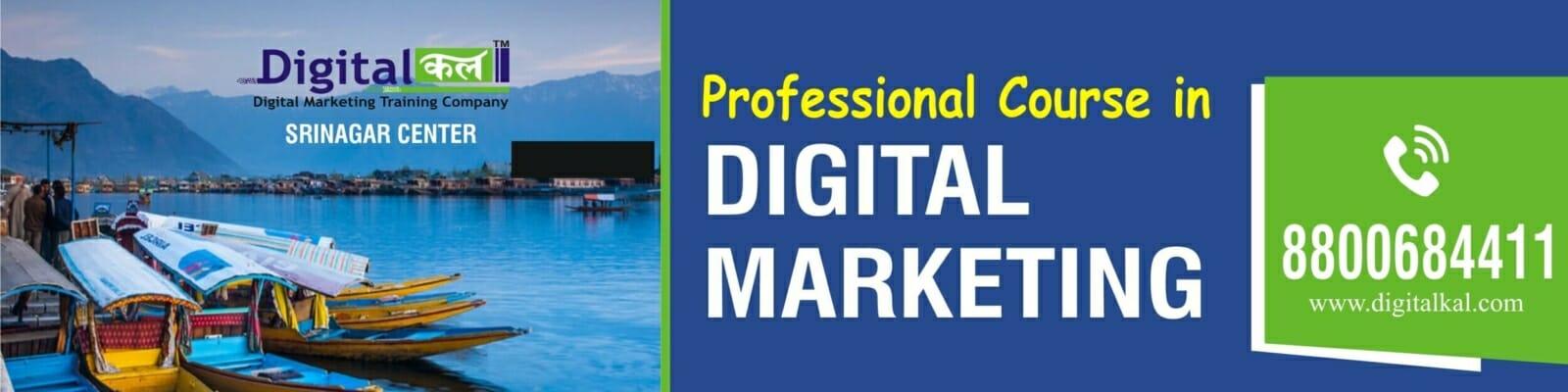 Digital Marketing Course Srinagar